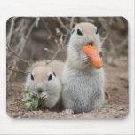 Señoras que almuerzan Mousepad Alfombrilla De Ratones