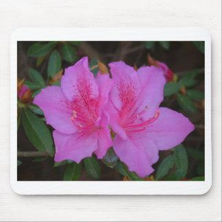 Señoras rosadas Mousepad Tapete De Ratones