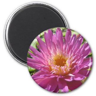Senorita 2 Inch Round Magnet