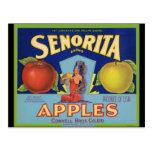 Senorita Apples San Francisco Postcard