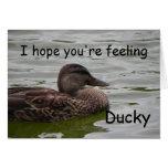 Sensación Ducky Tarjetas