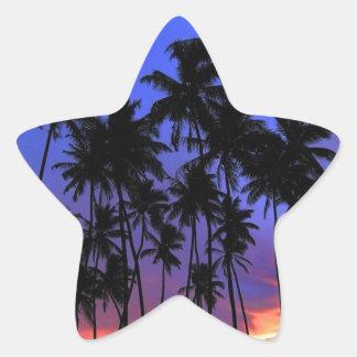 Sensación relajada de la Florida del diseño Pegatina En Forma De Estrella