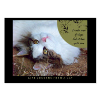 Sense Life Lessons From A Cat ACEO Art Cards Business Card