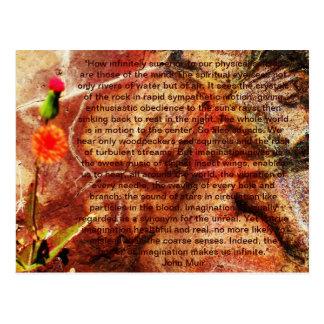Senses of the mind postcard