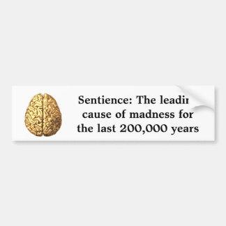 Sensibilidad: La causa principal de la locura Pegatina Para Auto