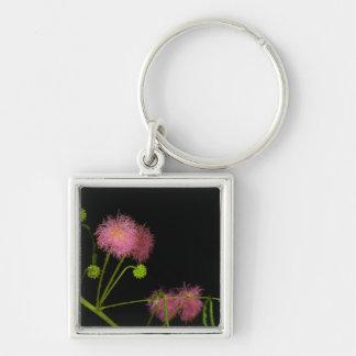 Sensitive Brier Silver-Colored Square Keychain