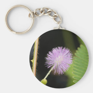 Sensitive plant (Mimosa pudica) Keychain