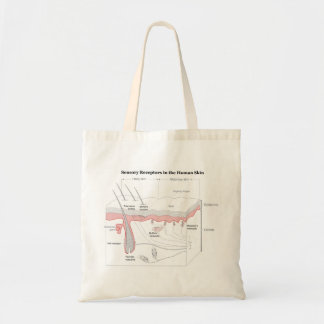 Sensory Receptors in the Human Skin Diagram Tote Bags