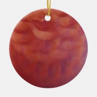 Sensual network lips surrealist analog film print ceramic ornament