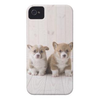 Sentada del Corgi de dos Galés Carcasa Para iPhone 4 De Case-Mate