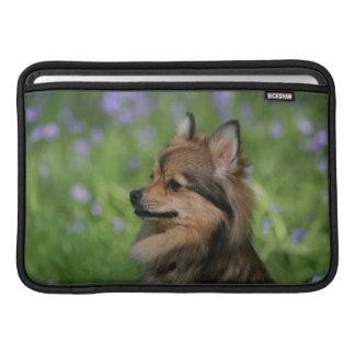Sentada del Headshot de Pomeranian Funda Para Macbook Air