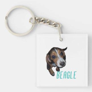 Sentada del perrito del beagle - color de fondo llavero cuadrado acrílico a doble cara