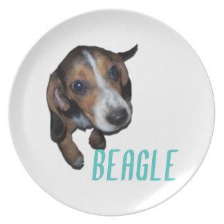 Sentada del perrito del beagle - color de fondo platos para fiestas