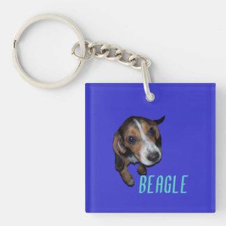 Sentada del perrito del beagle - fondo azul llavero cuadrado acrílico a doble cara