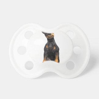 Sentada del perrito del Pinscher del Doberman Chupete De Bebe