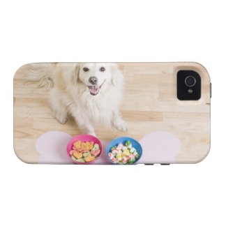 sentada mestiza delante de dos cuencos con el perr vibe iPhone 4 carcasas