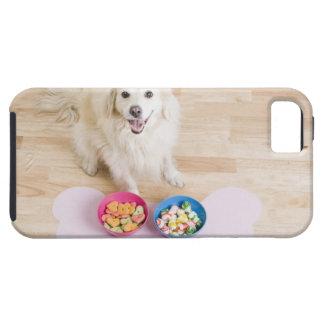 sentada mestiza delante de dos cuencos con el perr iPhone 5 Case-Mate cárcasas