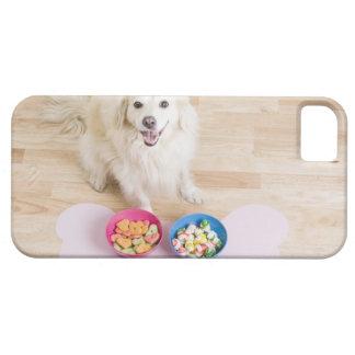 sentada mestiza delante de dos cuencos con el perr iPhone 5 Case-Mate carcasas