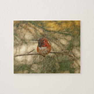 Sentada rufa del colibrí puzzles con fotos