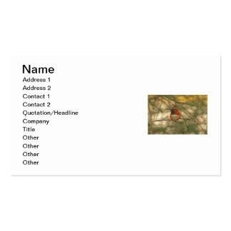 Sentada rufa del colibrí tarjeta personal