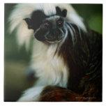Sentada superior del tamarin del algodón (Saguinus Azulejo