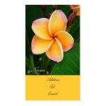 Sentidos tropicales tarjetas de visita