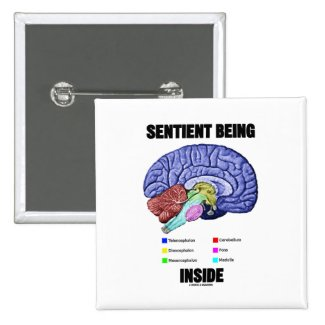 Sentient Being Inside (Anatomical Brain) Button