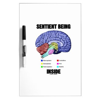 Sentient Being Inside (Anatomical Brain) Dry Erase Boards