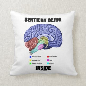 Sentient Being Inside (Anatomical Brain) Throw Pillow