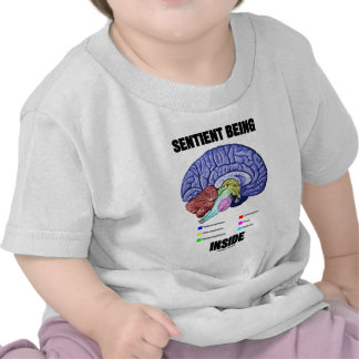 Sentient Being Inside (Anatomical Brain) T-shirts