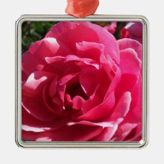Sentimental Rose Square Metal Christmas Ornament