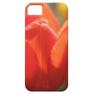 Sentimental Tulip iPhone SE/5/5s Case