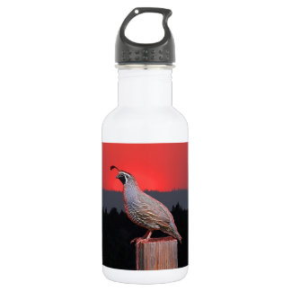 SENTINEL AT SUNSET WATER BOTTLE