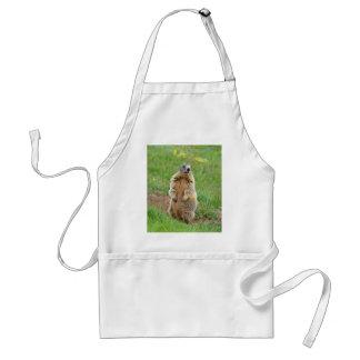 Sentinel marmot adult apron