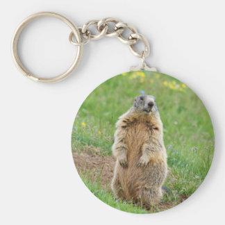 Sentinel marmot keychain