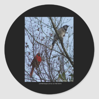 Sentinels Blue Jay and Cardinal by Lee Hiller Classic Round Sticker