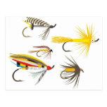 Señuelos de la pesca con mosca postal