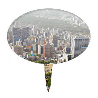 Seoul From Above Cake Topper