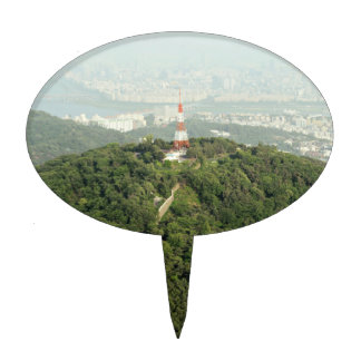Seoul From Above Photo Cake Topper