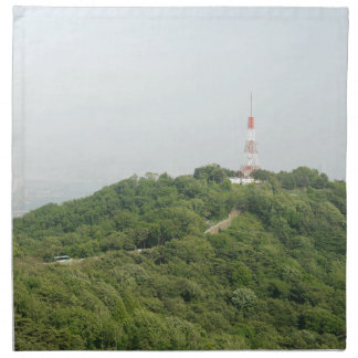 Seoul From Above Photography Cloth Napkin