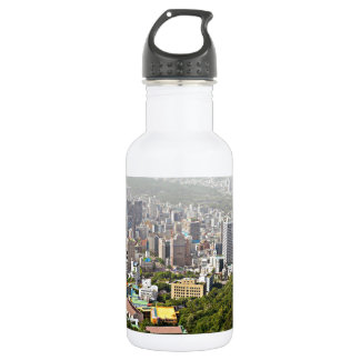 Seoul From Above Stainless Steel Water Bottle