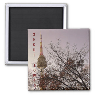 Seoul Tower/ Namsan Park, Seoul, South Korea Magnet