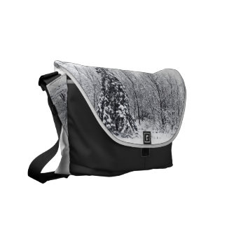 separation with certainty courier bag