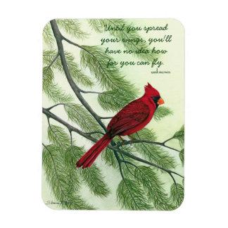 Separe sus alas - imán cardinal rojo brillante