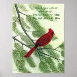 Separe sus alas - poster cardinal rojo brillante