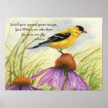 Separe sus alas - poster del Goldfinch