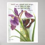 Separe sus alas - poster del iris y de la mariposa