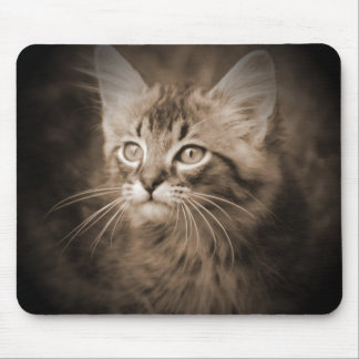 Sepia #1 Mousepad del Coon de Maine