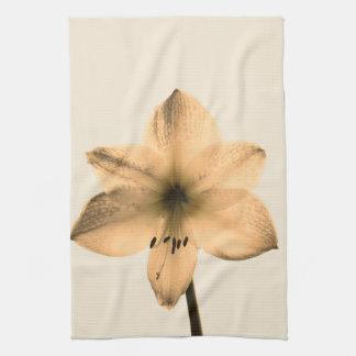 sepia amaryllis kitchen towel