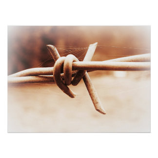 Sepia Barbwire Close up Photographic Poster